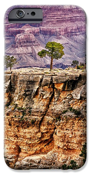 The Grand Canyon IV iPhone Case by Tom Prendergast