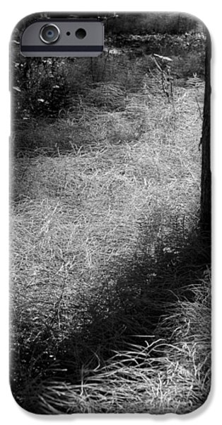 Monotone iPhone Cases - The Grass Carpet iPhone Case by David Patterson