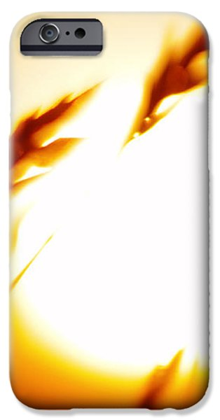 The Grass Withers iPhone Case by Thomas R Fletcher