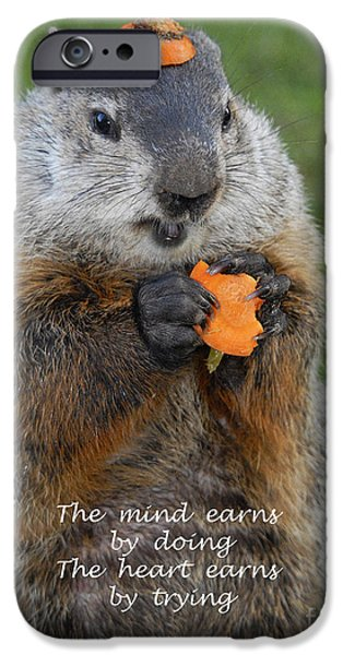 Groundhog iPhone Cases - The heart earns by trying iPhone Case by Paul W Faust -  Impressions of Light