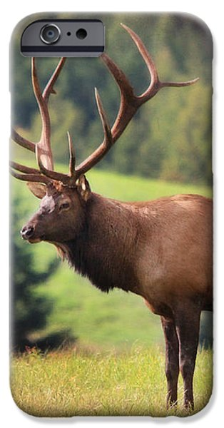 The King of Winslow Hill iPhone Case by Lori Deiter