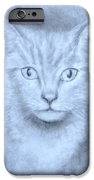 Jack Skinner iPhone Cases - The Kitten iPhone Case by Jack Skinner