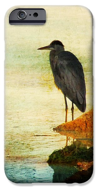 Fowl iPhone Cases - The Lonely Hunter iPhone Case by Amy Tyler