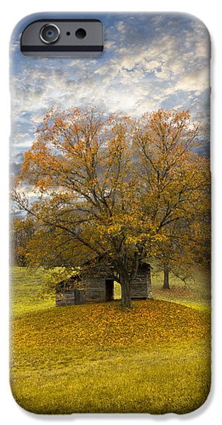 The Old Oak Tree iPhone Case by Debra and Dave Vanderlaan