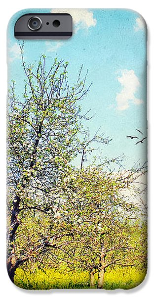 The Orchard iPhone Case by Darren Fisher
