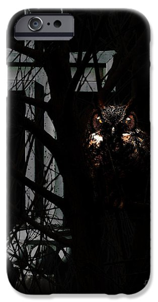 Cemetary iPhone Cases - The Owl and The Cross iPhone Case by Wingsdomain Art and Photography