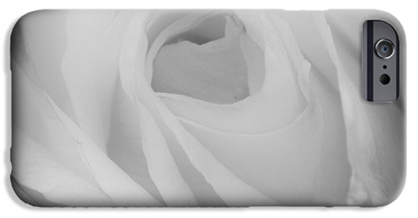 Princess Diana iPhone Cases - The Princess Diana Rose III iPhone Case by David Patterson