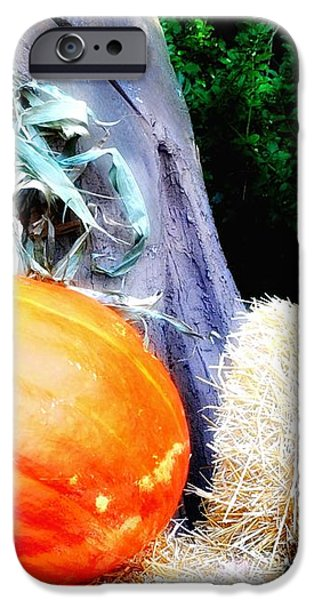 the Pumpkin and the Scarecrow iPhone Case by Bill Cannon