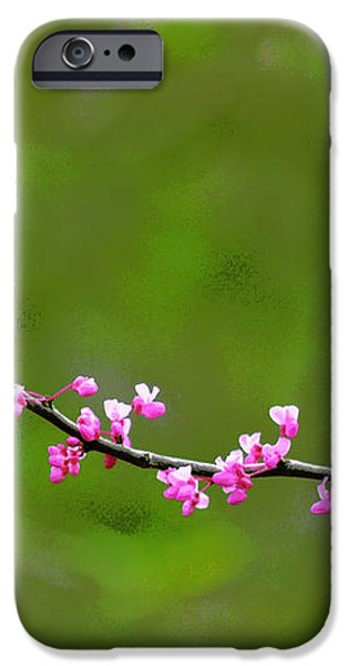 The Rite Of Spring iPhone Case by Fraida Gutovich