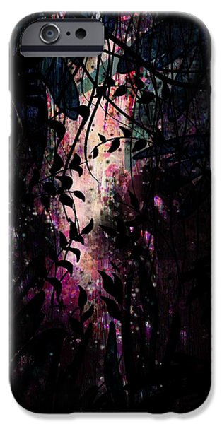 Nature Divine iPhone Cases - The Secret Passage iPhone Case by Rachel Christine Nowicki