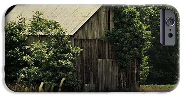 Maryland Barn Photographs iPhone Cases - The Summer Barn iPhone Case by Rebecca Sherman