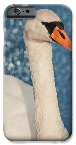 Animal Photography Mixed Media iPhone Cases - The swan iPhone Case by Angela Doelling AD DESIGN Photo and PhotoArt