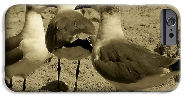 Seagull iPhone Cases - The Three Amigos iPhone Case by Trish Tritz