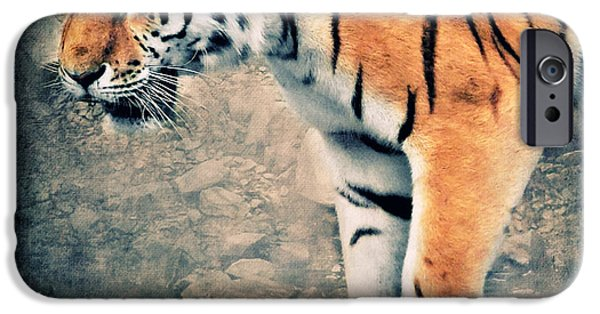 Tigers iPhone Cases - The Tiger iPhone Case by Angela Doelling AD DESIGN Photo and PhotoArt