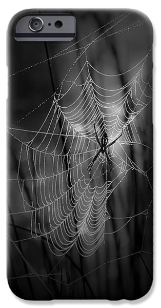 Black Spider iPhone Cases - The Weaver iPhone Case by Ron Jones