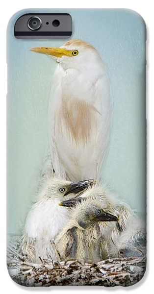 Cattle Egret iPhone Cases - They Have My Nose iPhone Case by Betty LaRue