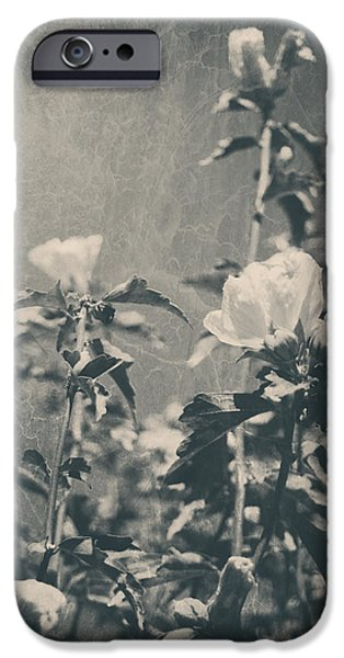 Rose iPhone Cases - This Glorious Sadness iPhone Case by Laurie Search