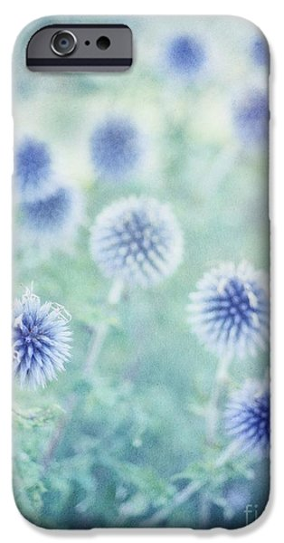 Thistle iPhone Cases - Thistle Dreams iPhone Case by Priska Wettstein