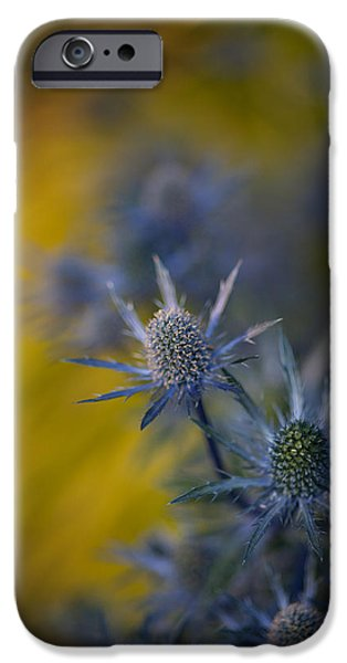 Thistle iPhone Cases - Thistles Motion iPhone Case by Mike Reid