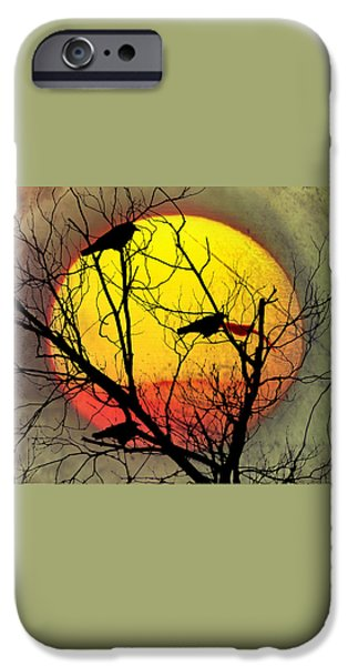 Three Blackbirds iPhone Case by Bill Cannon
