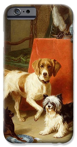 Flooring iPhone Cases - Three dogs iPhone Case by Conradyn Cunaeus