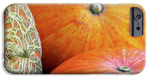 Biologic iPhone Cases - Three Pumpkins iPhone Case by Carlos Caetano