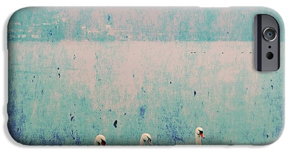 Swan iPhone Cases - Three Swans iPhone Case by Joana Kruse