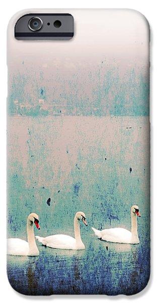 three swans iPhone Case by Joana Kruse