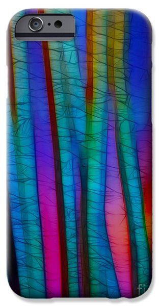 Through the Trees iPhone Case by Judi Bagwell