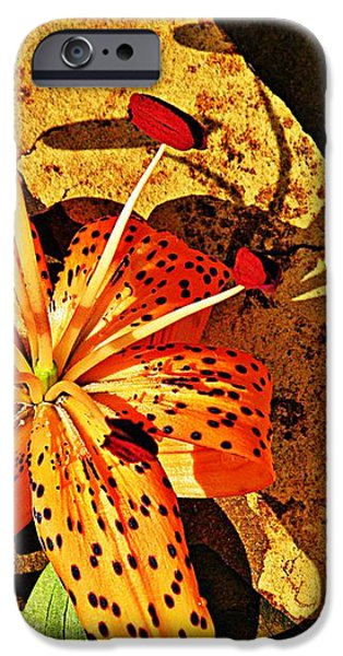 Tiger Lily Still Life  iPhone Case by Chris Berry