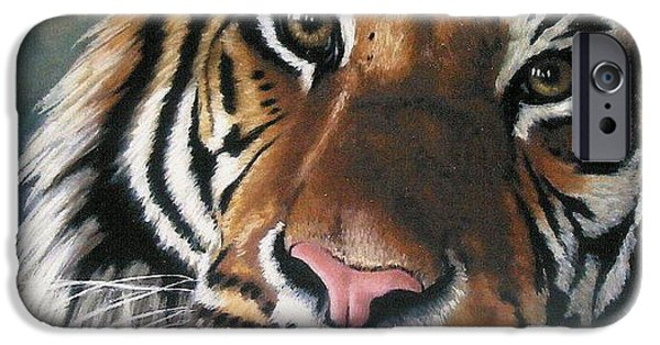 Pastels iPhone Cases - Tigger iPhone Case by Barbara Keith
