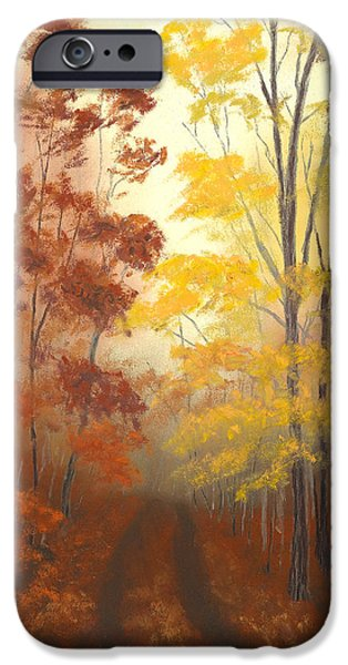 National Pastels iPhone Cases - Timber Road iPhone Case by Garry McMichael