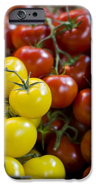 Tomatoes on the Vine iPhone Case by Heather Applegate