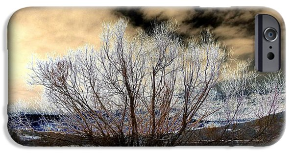 Willow Lake iPhone Cases - Touch Of Frost iPhone Case by Will Borden