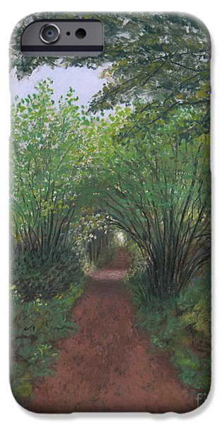 Pathway Pastels iPhone Cases - Trail to Spencer Spit iPhone Case by Ginny Neece