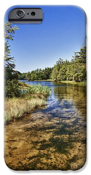 Tranquil Stream in Northern Michigan iPhone Case by Christopher Purcell