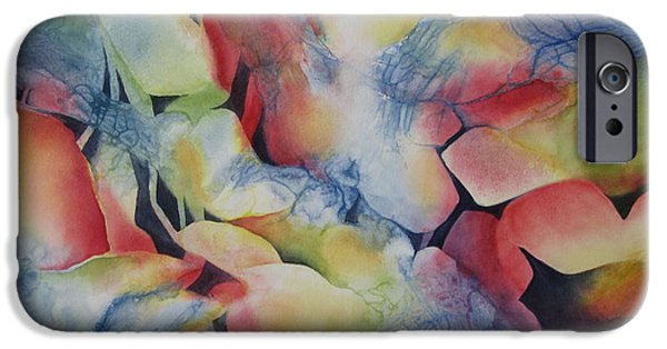 Illusional iPhone Cases - Transformation iPhone Case by Deborah Ronglien