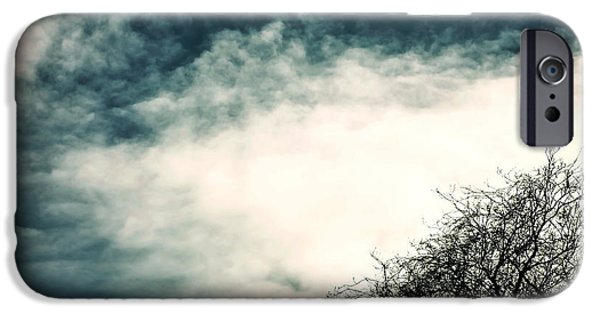 Winter Trees Photographs iPhone Cases - Tree Crown iPhone Case by Joana Kruse