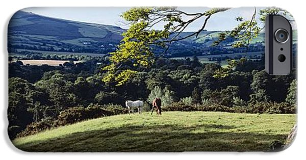 The Horse iPhone Cases - Tree In A Field, Great Sugar Loaf iPhone Case by The Irish Image Collection