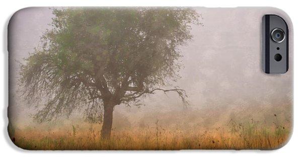 Tn Barn iPhone Cases - Tree in Fog iPhone Case by Debra and Dave Vanderlaan