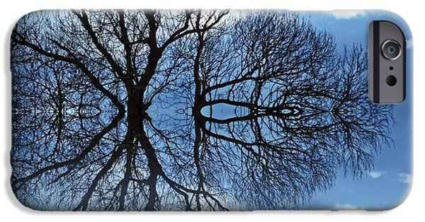 Tree Print Digital iPhone Cases - Tree of Life iPhone Case by Sharon Lisa Clarke