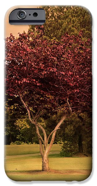 Tree of Love iPhone Case by Jai Johnson
