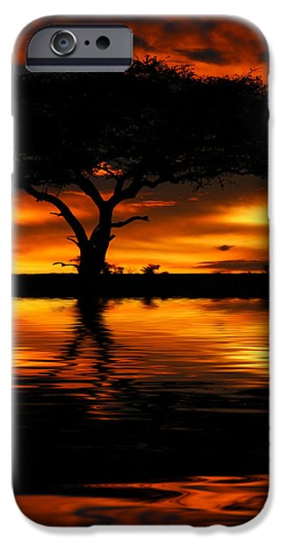 Tree silhouette and dramatic sunset iPhone Case by Anna Omelchenko