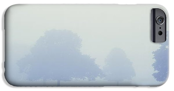 Fog Mist iPhone Cases - Trees In Mist iPhone Case by Jeremy Walker