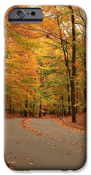 Trees Of Autumn - Holmdel Park iPhone Case by Angie Tirado