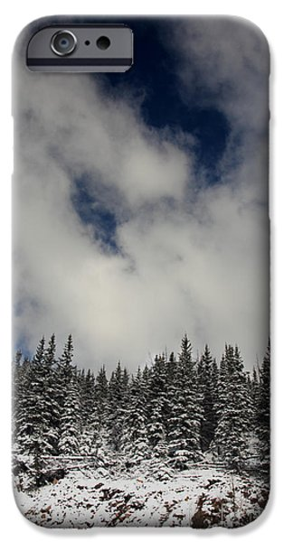 Arapaho iPhone Cases - Trees of the Sky iPhone Case by Dana DiPasquale
