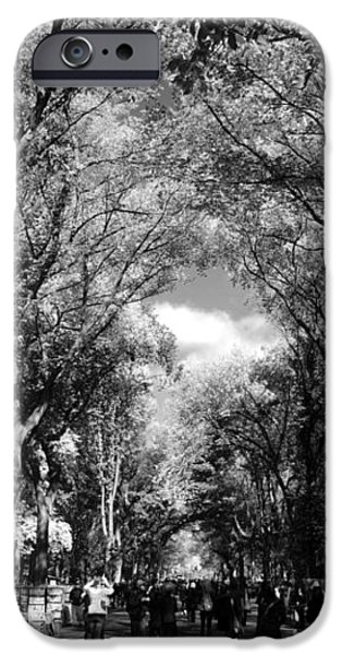 TREES on the MALL in CENTRAL PARK in BLACK AND WHITE iPhone Case by ROB HANS