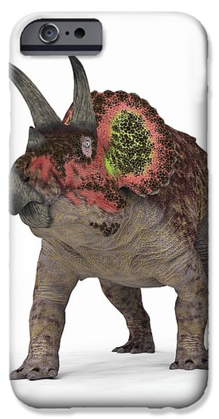Triceratops iPhone Cases - Triceratops Dinosaur iPhone Case by Walter Myers