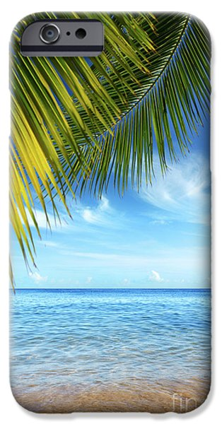 Bay Photographs iPhone Cases - Tropical Beach iPhone Case by Carlos Caetano