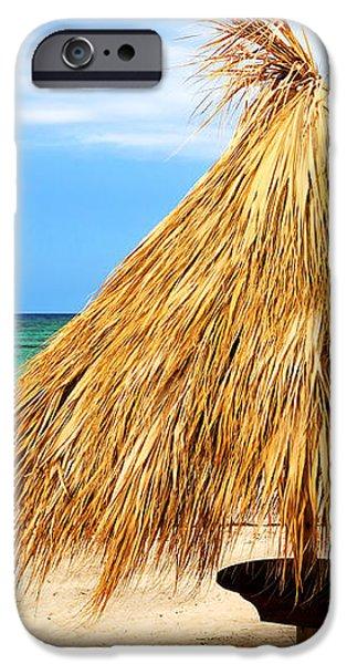 Tropical beach iPhone Case by Elena Elisseeva